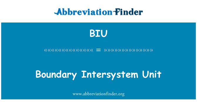 BIU: Boundary Intersystem Unit