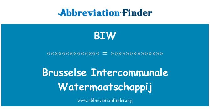 BIW: Brusselse Intercommunale Watermaatschappij