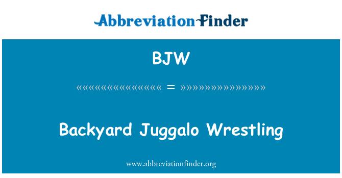 BJW: Backyard Juggalo Wrestling