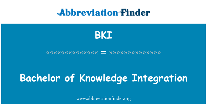 BKI: Bachelor of Knowledge Integration