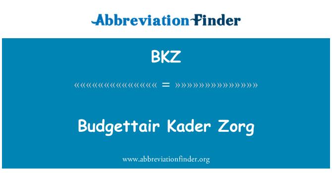 BKZ: Budgettair Kader Zorg