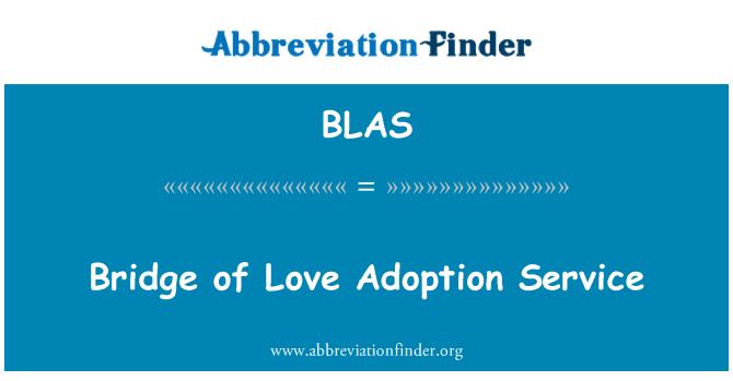 BLAS: Servicio de adopción de puente de amor