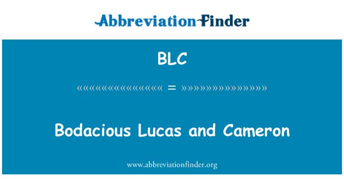 BLC: Bodacious Lucas and Cameron