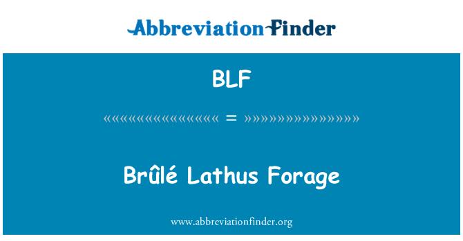 BLF: Brûlé Lathus Forage