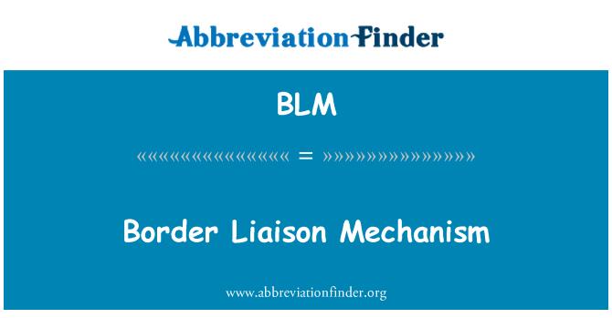 BLM: Border Liaison Mechanism
