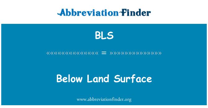 BLS: Below Land Surface