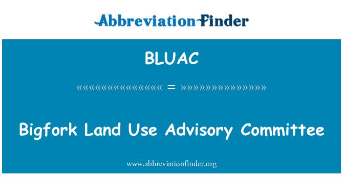 BLUAC: Bigfork Land Use Advisory Committee