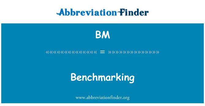 BM: Benchmarking