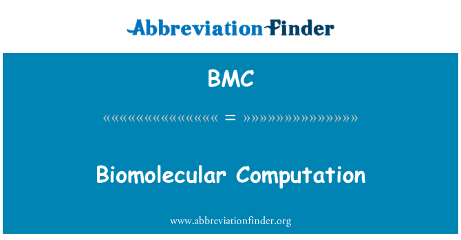 BMC: Biomolecular Computation