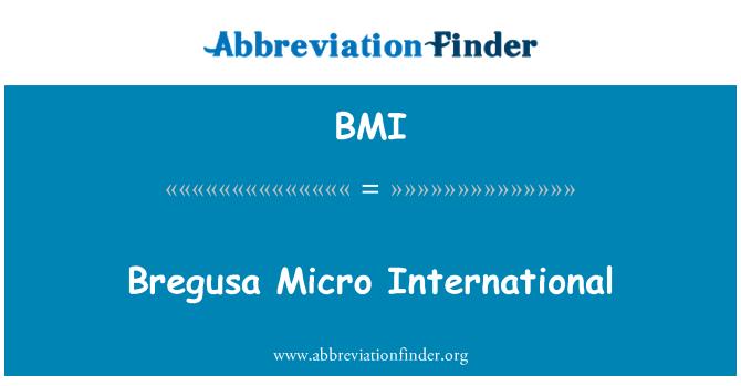 BMI: Bregusa Micro International