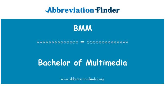 BMM: Bachelor of Multimedia