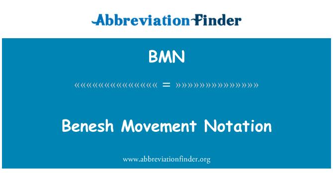 BMN: Benesh Movement Notation