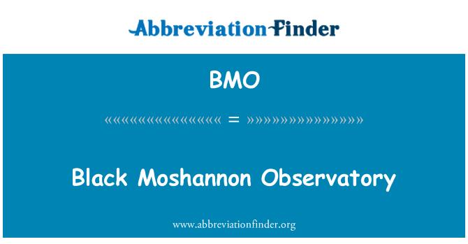 BMO: Black Moshannon Observatory
