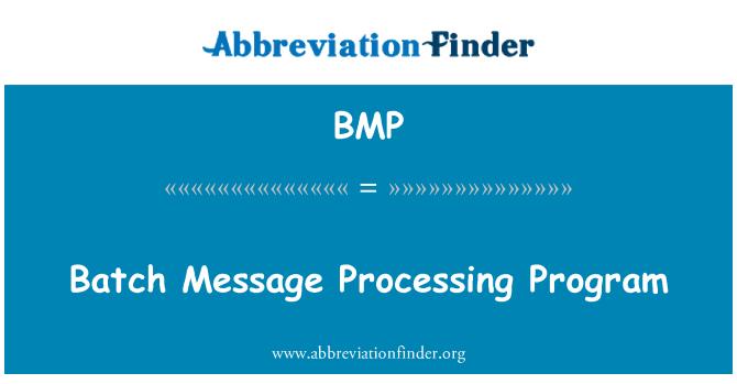BMP: Batch Message Processing Program