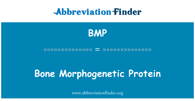 BMP: Bone Morphogenetic Protein