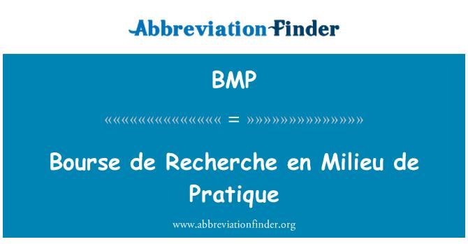 BMP: Bourse de Recherche en Milieu de Pratique