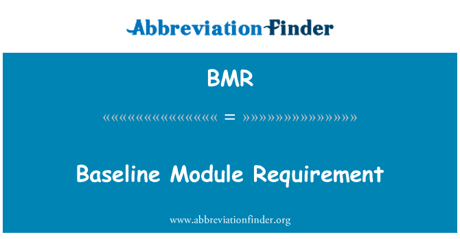 BMR: Baseline Module Requirement