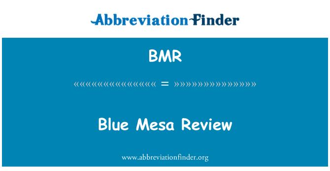 BMR: Blue Mesa Review