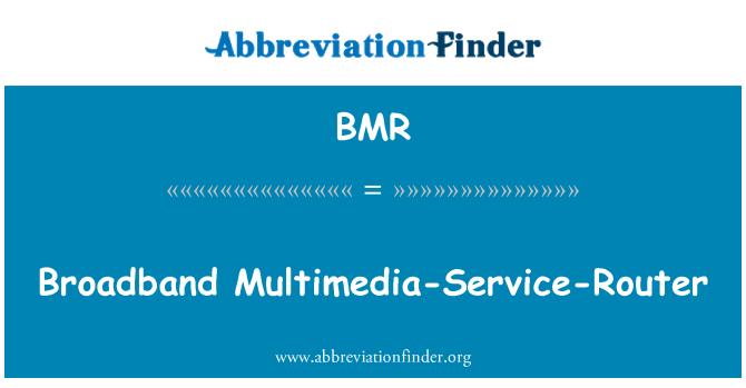 BMR: Broadband Multimedia-Service-Router