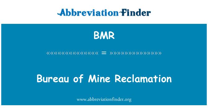 BMR: Bureau of Mine Reclamation