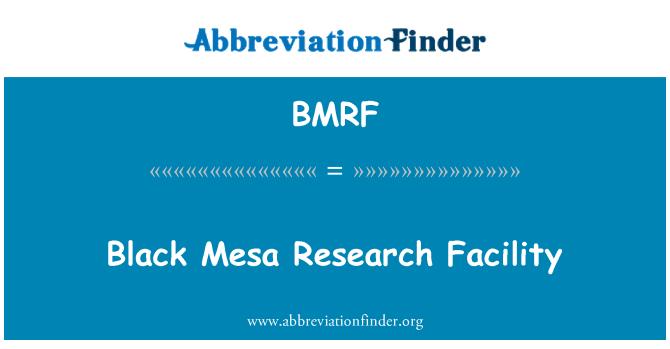 BMRF: 黑梅萨研究设施