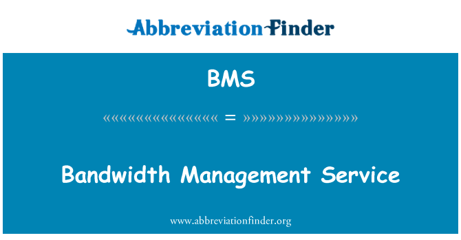 BMS: Bandwidth Management Service