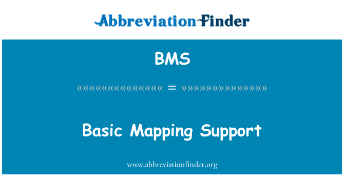 BMS: Basic Mapping Support