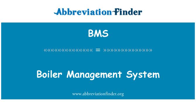 BMS: Boiler Management System
