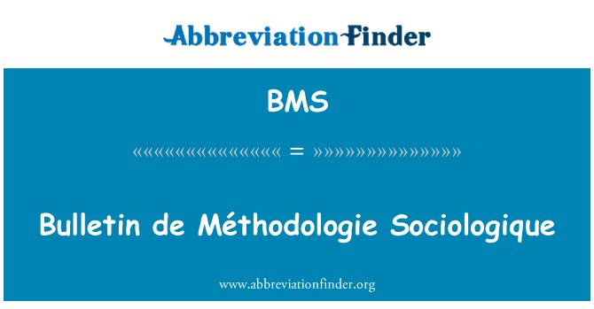BMS: Bulletin de Méthodologie Sociologique