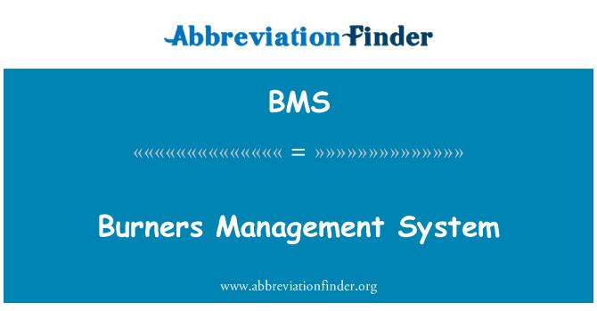 BMS: Burners Management System