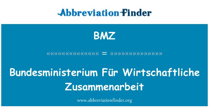BMZ: Bundesministerium Für Wirtschaftliche Zusammenarbeit