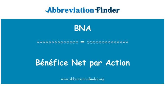 BNA: Bénéfice Net par Action