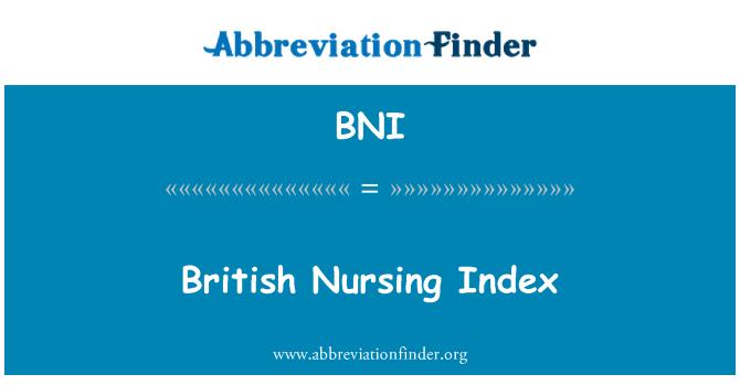 BNI: British Nursing Index