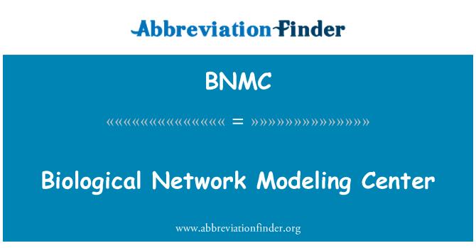 BNMC: Bioloogilised Võrgukeskus modelleerimine