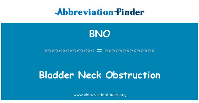 BNO: Bladder Neck Obstruction
