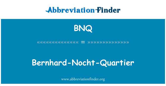 BNQ: Bernhard-Nocht-Quartier