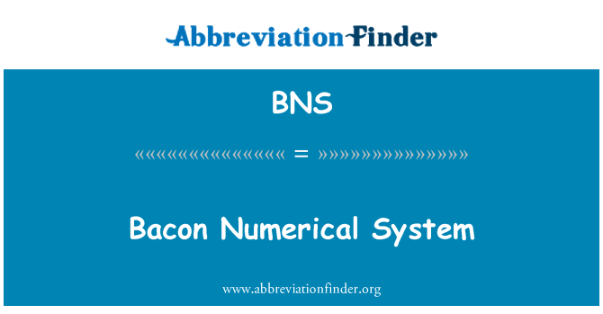 BNS: Bacon Numerical System