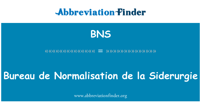 BNS: Bureau de Normalisation de la Siderurgie