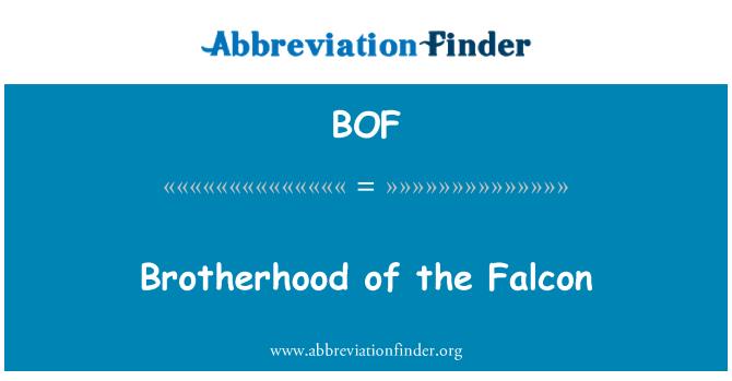 BOF: Brotherhood of the Falcon