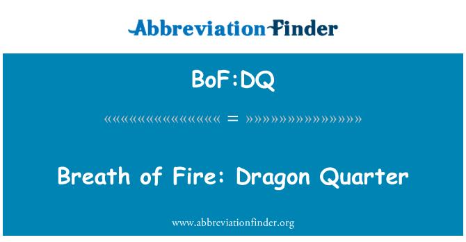 BoF:DQ: Breath of Fire: Dragon Quarter