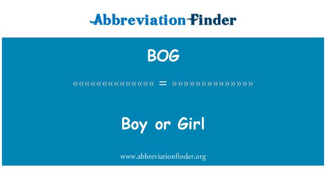 BOG: Boy or Girl