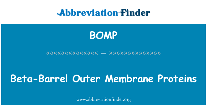BOMP: Beta-Barrel Outer Membrane Proteins