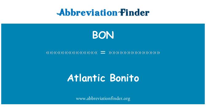 BON: Atlantic Bonito