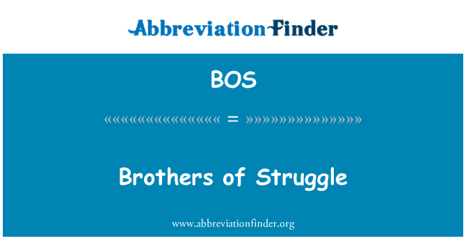 BOS: Brothers of Struggle