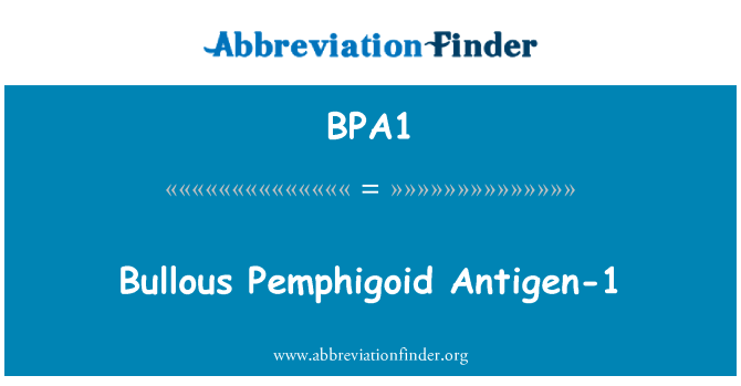 BPA1: Bullous Pemphigoid Antigen-1