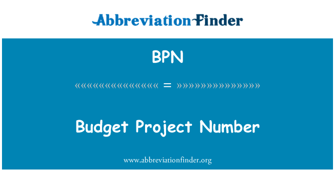 BPN: Budget Project Number