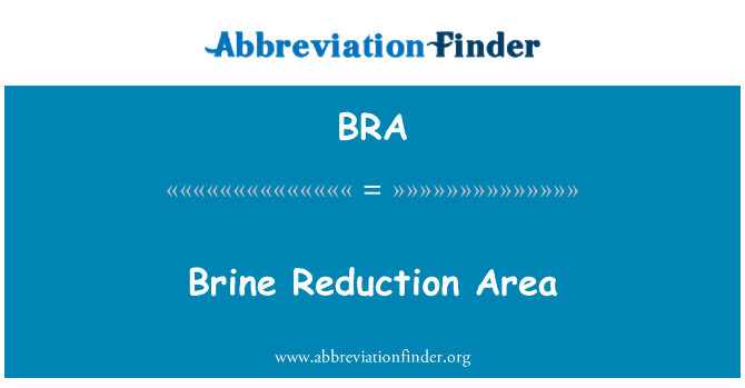BRA: Brine Reduction Area