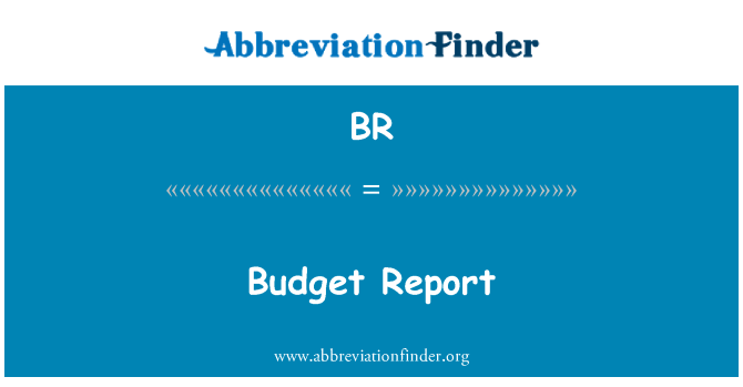 BR: Budget Report