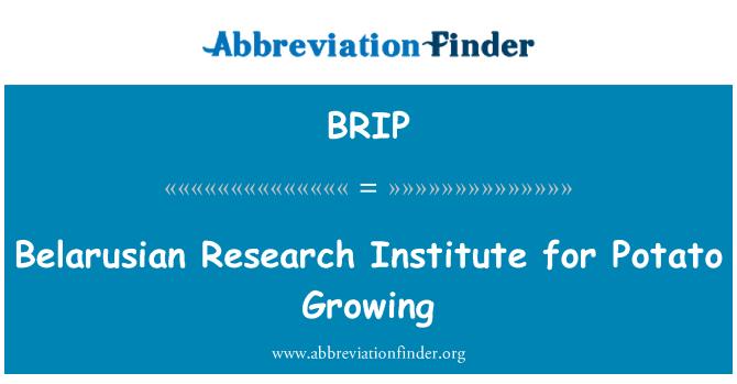 BRIP: Belarusian Research Institute for Potato Growing