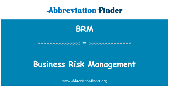 BRM: Business Risk Management